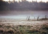 Herbstmorgen in Buxtehude.jpg