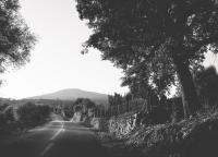 Wege quer durch Mallorca.jpg
