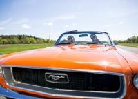 orangefarbener-Mustang
