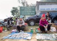 Fischverkauf auf dem vietnamesischen Markt.jpg