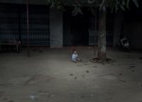 ein vietnamesisches Kind.jpg
