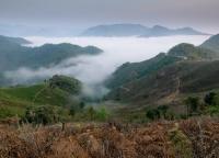 Morgennebel in Vietnam.jpg